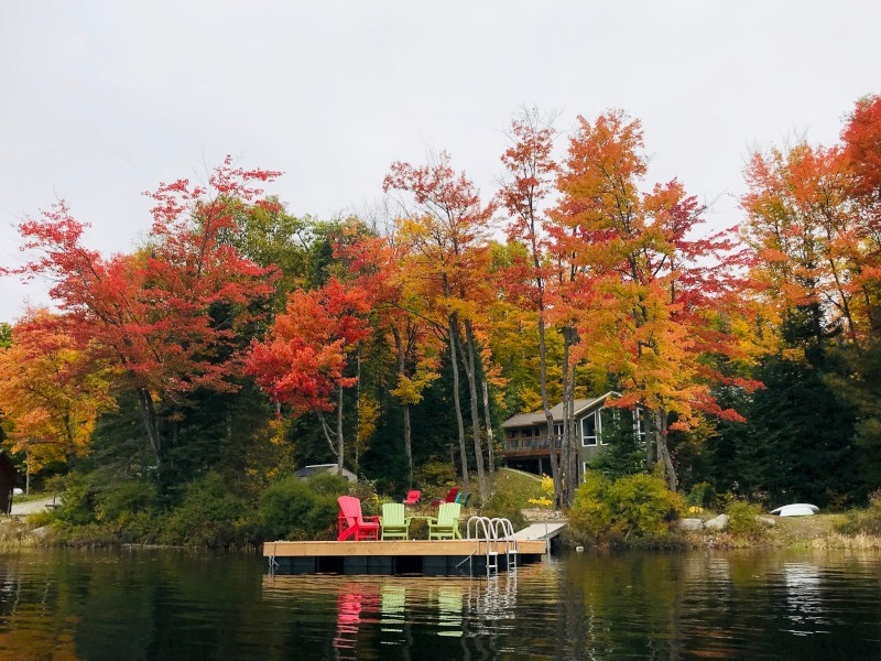 Lakeview of the Cottage