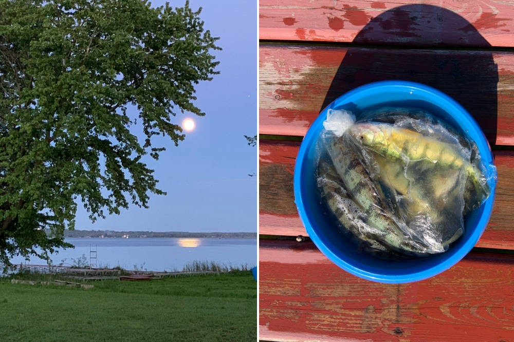 Moonrise over the Bay and Catch of the Day!