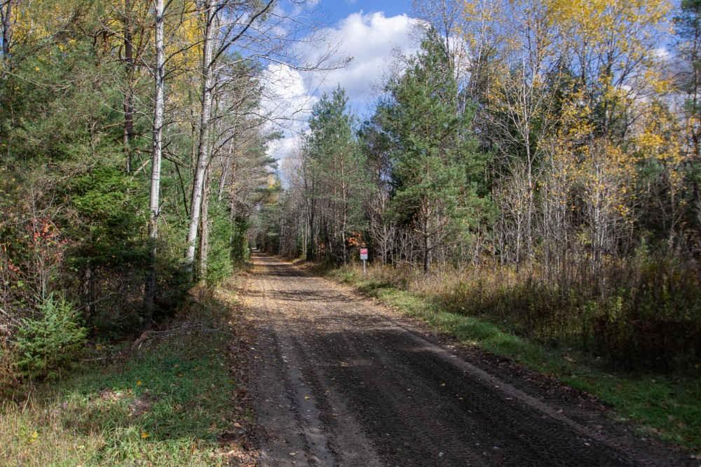 Access to Haliburton Rail Trail - Short Walk Away