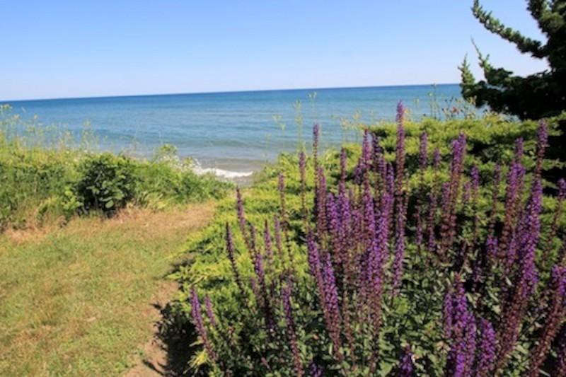 View Across Lake Ontario