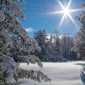 The Magic of an Ontario Winter