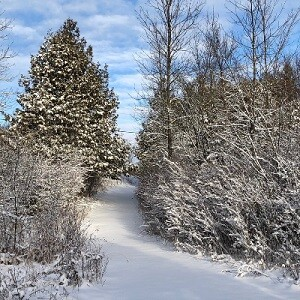 Get outside this Winter Wednesday!