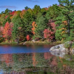 We have Cottages available for Thanksgiving long weekend